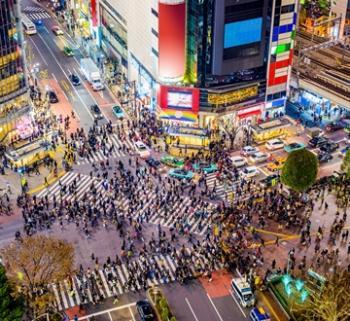 EASY <BR> KIOTO - TOKYO