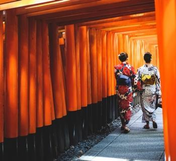 JAPÓN <BR> FREE PLAN TAKAYAMA